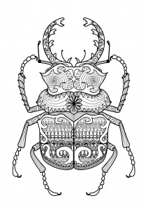 coloring-zentangle-beetle-by-bimdeedee