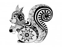 coloring-adult-zentangle-squirrel-by-bimdeedee free to print