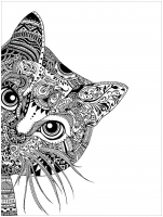 coloring-pages-adults-cat-head free to print