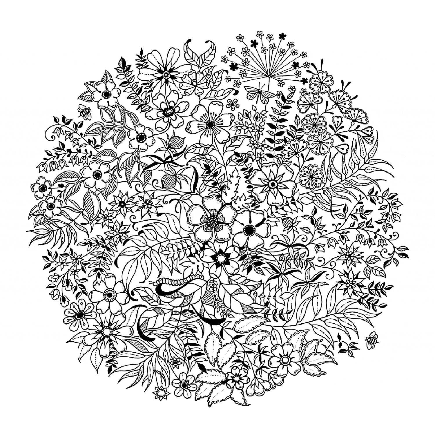 Flowers and vegetation - Coloring pages for adults : simple-mandala-flowered