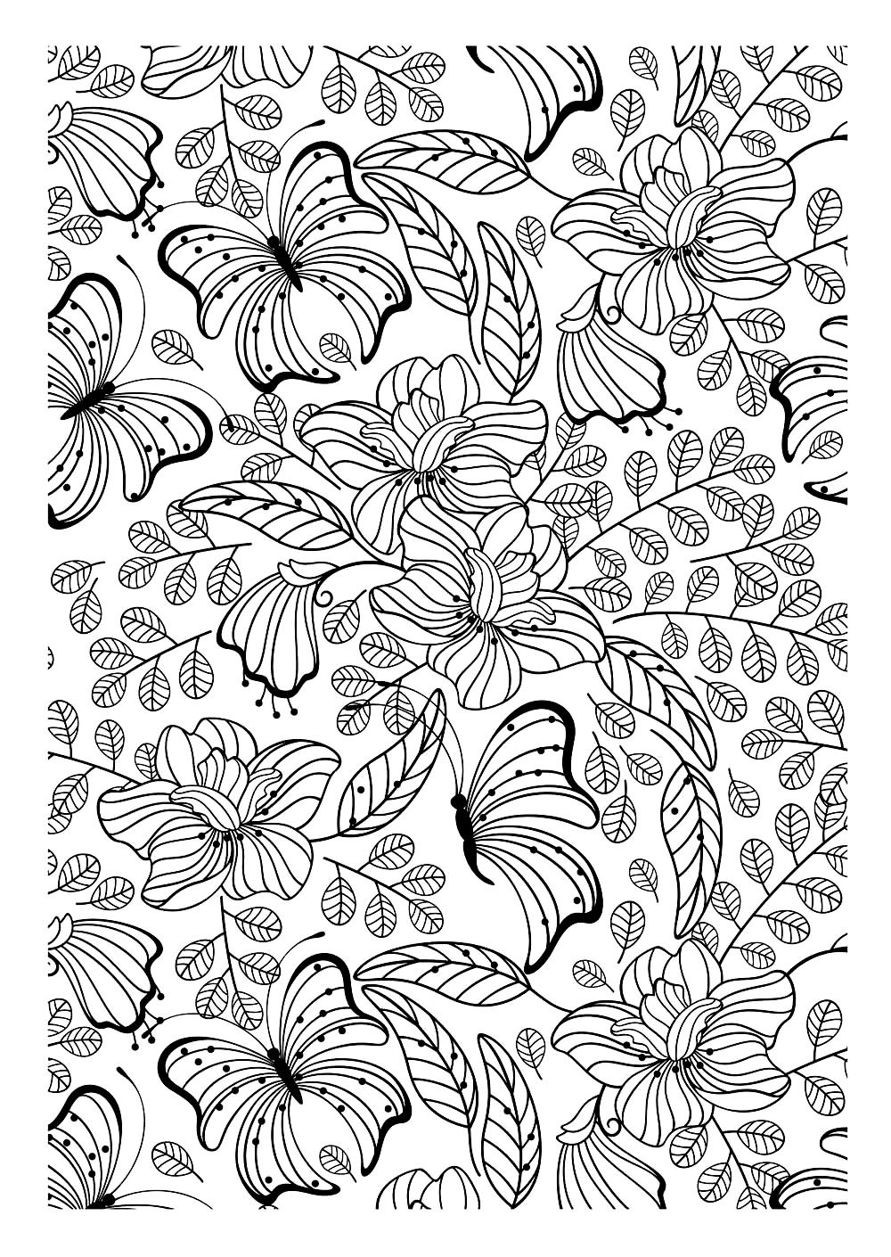 Insects coloring pages for adults coloring adult for Coloring pages of butterflies for adults