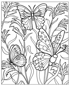 coloring-difficile-papillons free to print
