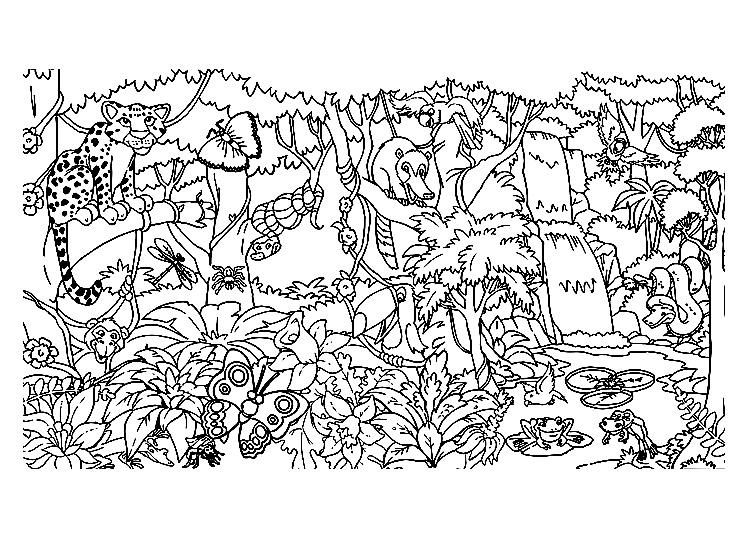 Coloring Pages Animals In The Forest : Jungle forest coloring pages for adults