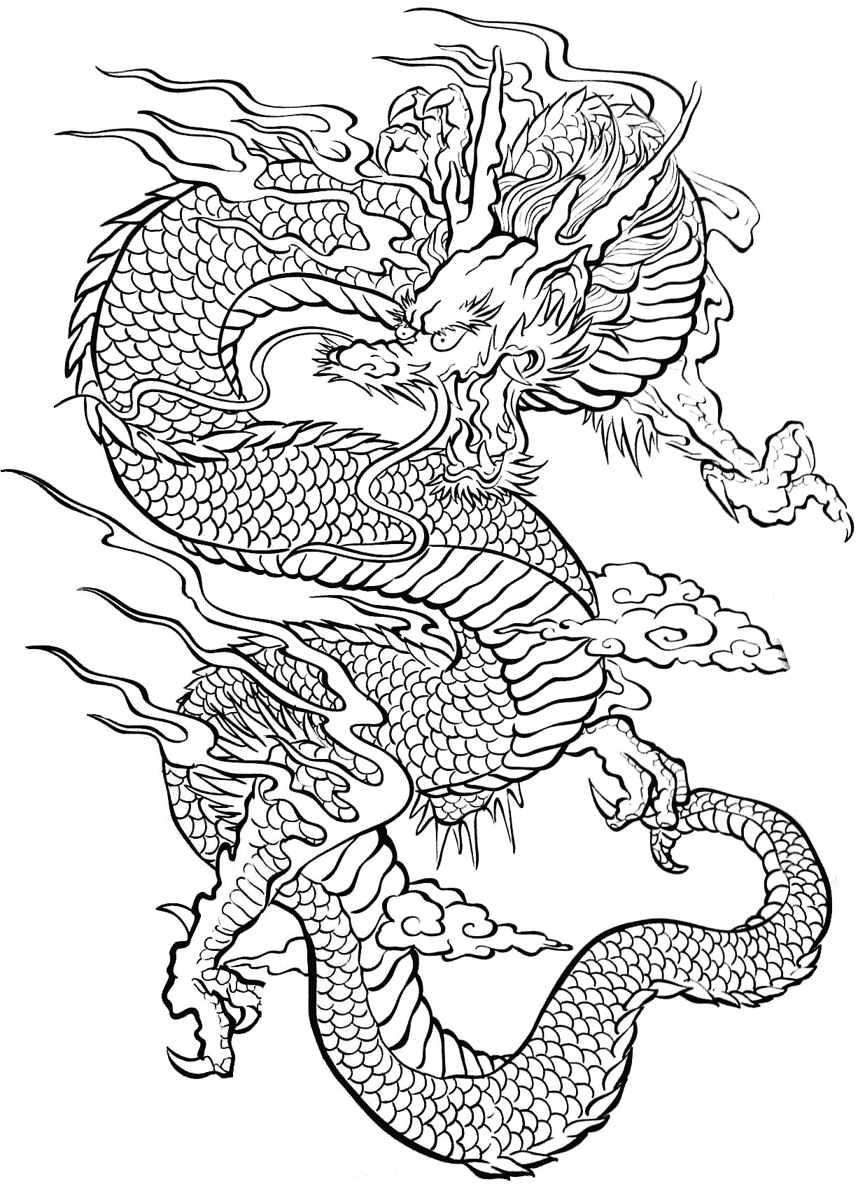 Adult dragon coloring pages sex picture