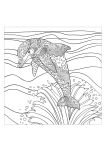 coloring-page-adults-sea-dolphin free to print
