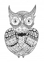 coloring-page-adults-owl-zentangle-rachel free to print