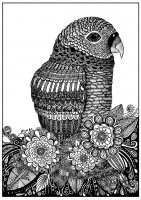 coloring-page-adults-parrot-zentangle-sabrina free to print
